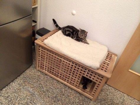 25 Ikea Hacks That Your Cat Will Love Cat Litter Box Diy Ikea Cat Hiding Cat Litter Box