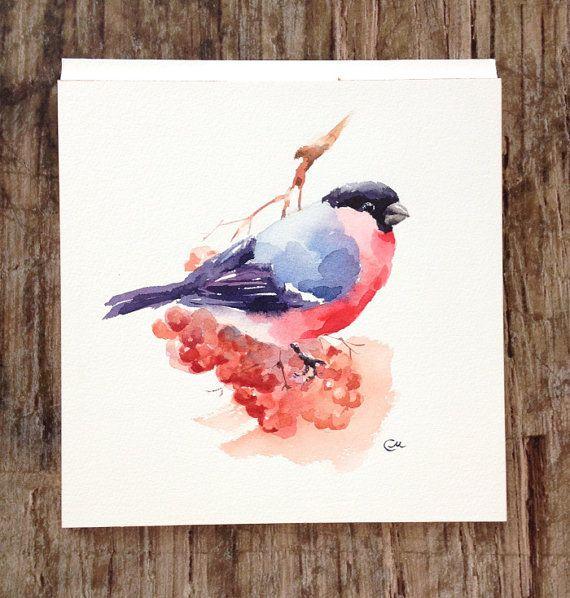 Bullfinch Original Watercolor Bird Painting 7 by CMwatercolors