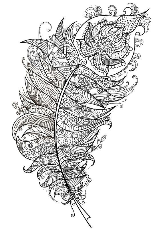 Feather Beautiful Intricate Adult Coloring Page Szinezo