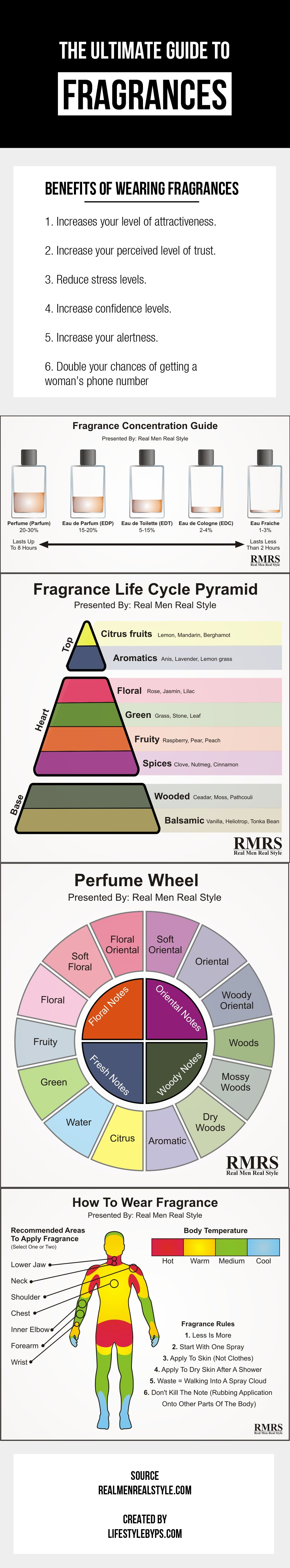 The ultimate guide to fragrances infographic infographics guy and