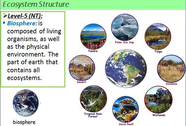 Definition And Example Of  U0026quot Biosphere U0026quot