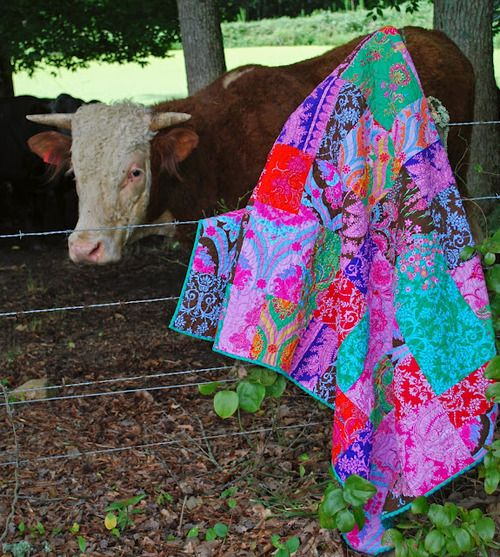 love this cow& this quilt!