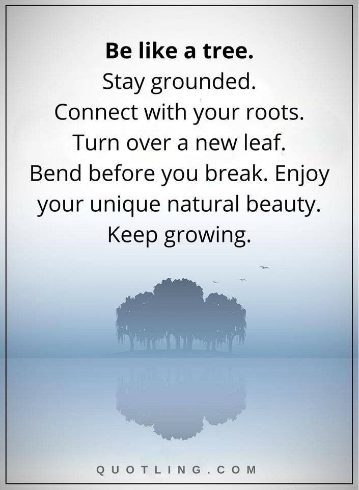Life Lessons Be Like A Tree Stay Grounded Connect With Your Roots Turn Over New Leaf Bend Before You Break Enjoy Unique Natural Beauty