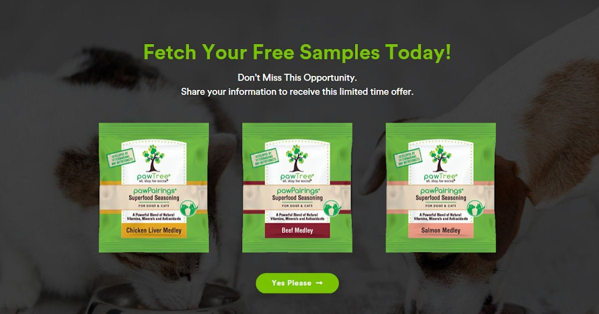 Contact support pawtree holistic dog dog allergies