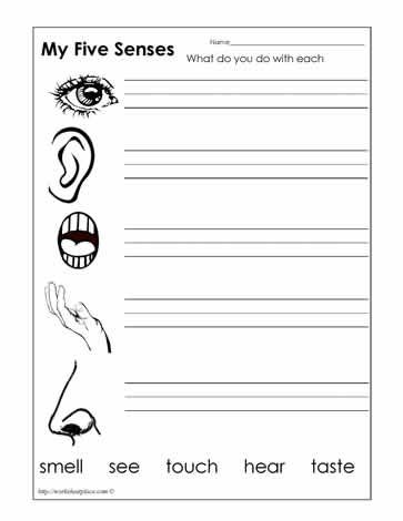 Five Senses Worksheets Kindergarten Worksheets Printable Five Senses Worksheet Kindergarten Worksheets