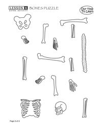Bones/skeleton puzzle from Our Time to Learn under Support Materials ...