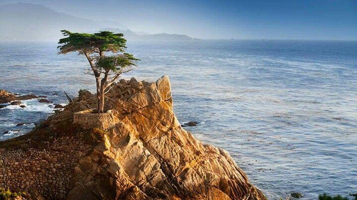 Pebble Beach Monterey Ca