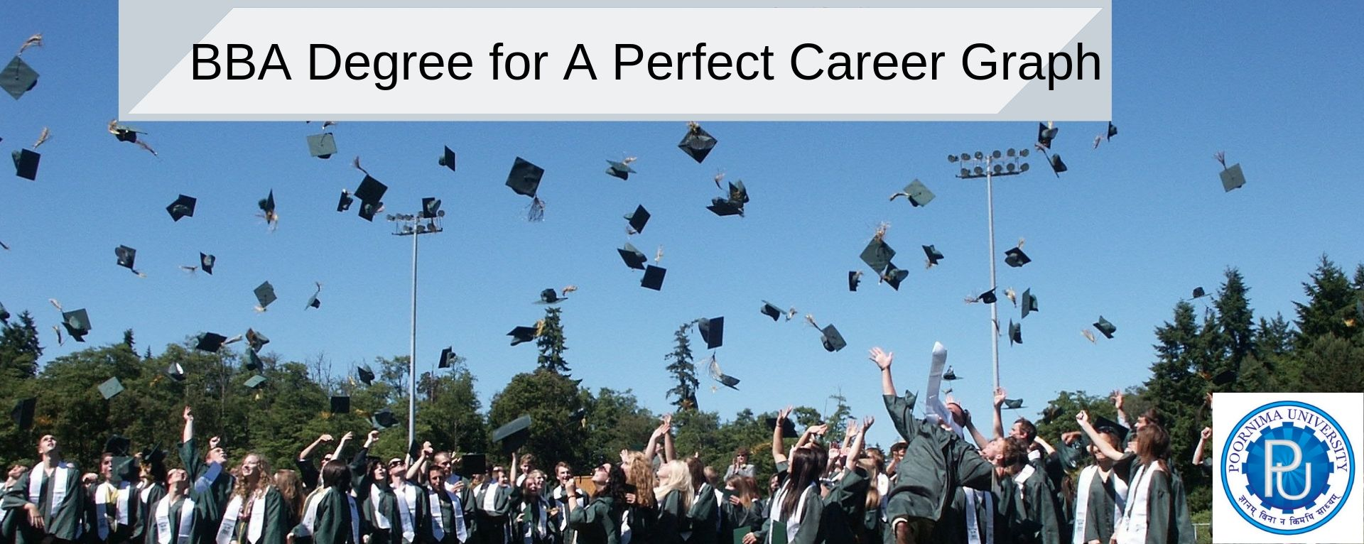BBA Degree for A Perfect Career Graph Business degree