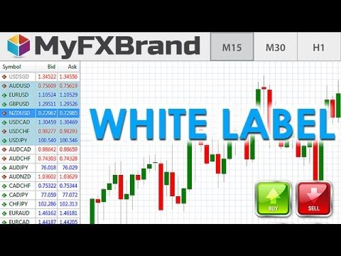 White label forex article