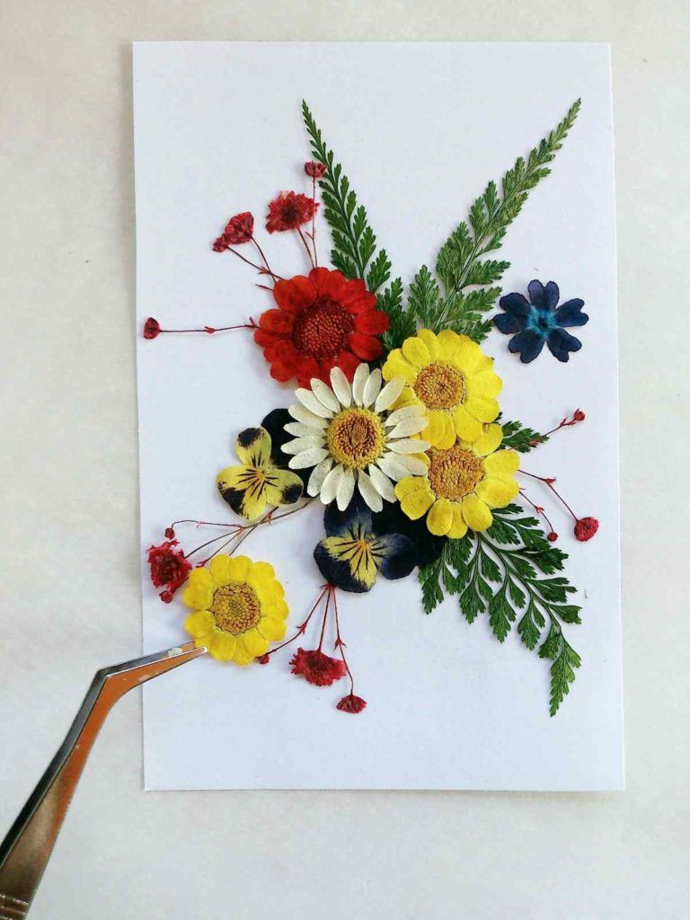 How to press flowers for your arts and crafts projects