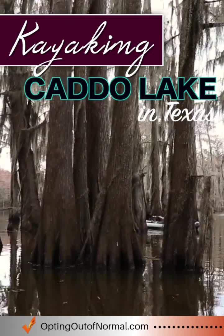 Kayaking Caddo Lake in Texas