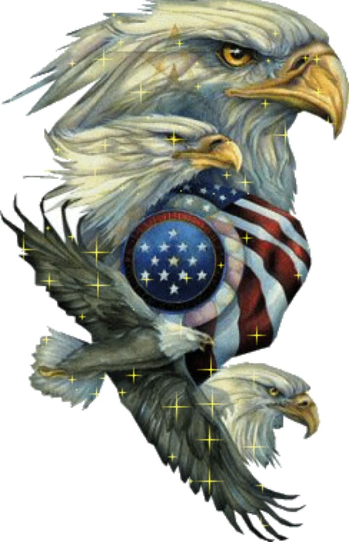 Eagles Encircle US Flag -♥ what this stands for..we are Home of the ...