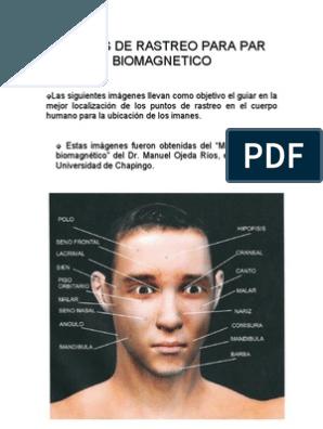 Cancer de prostata bioneuroemocion. Biodescodificacion cancer de prostata