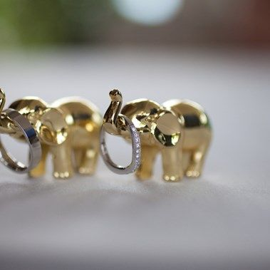 aww too cute elephant with wedding rings Tina Richards