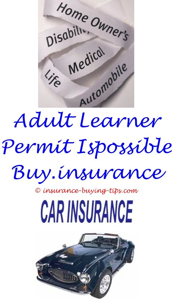 Hazard Insurance Quotes Custom Affordable Auto Insurance Los Angeles  Insurance Prices And Price Quote