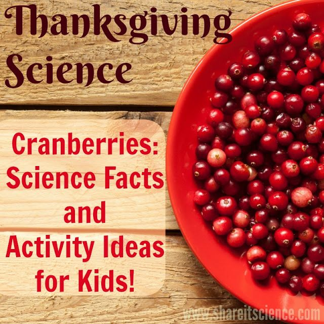 Science Facts Christmas: Thanksgiving Cranberry Science Activities Facts