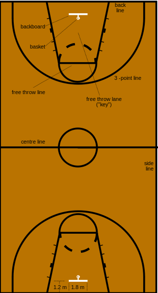 Basketball Court Diagram Labeled Basketball Skills Basketball Floor Basketball