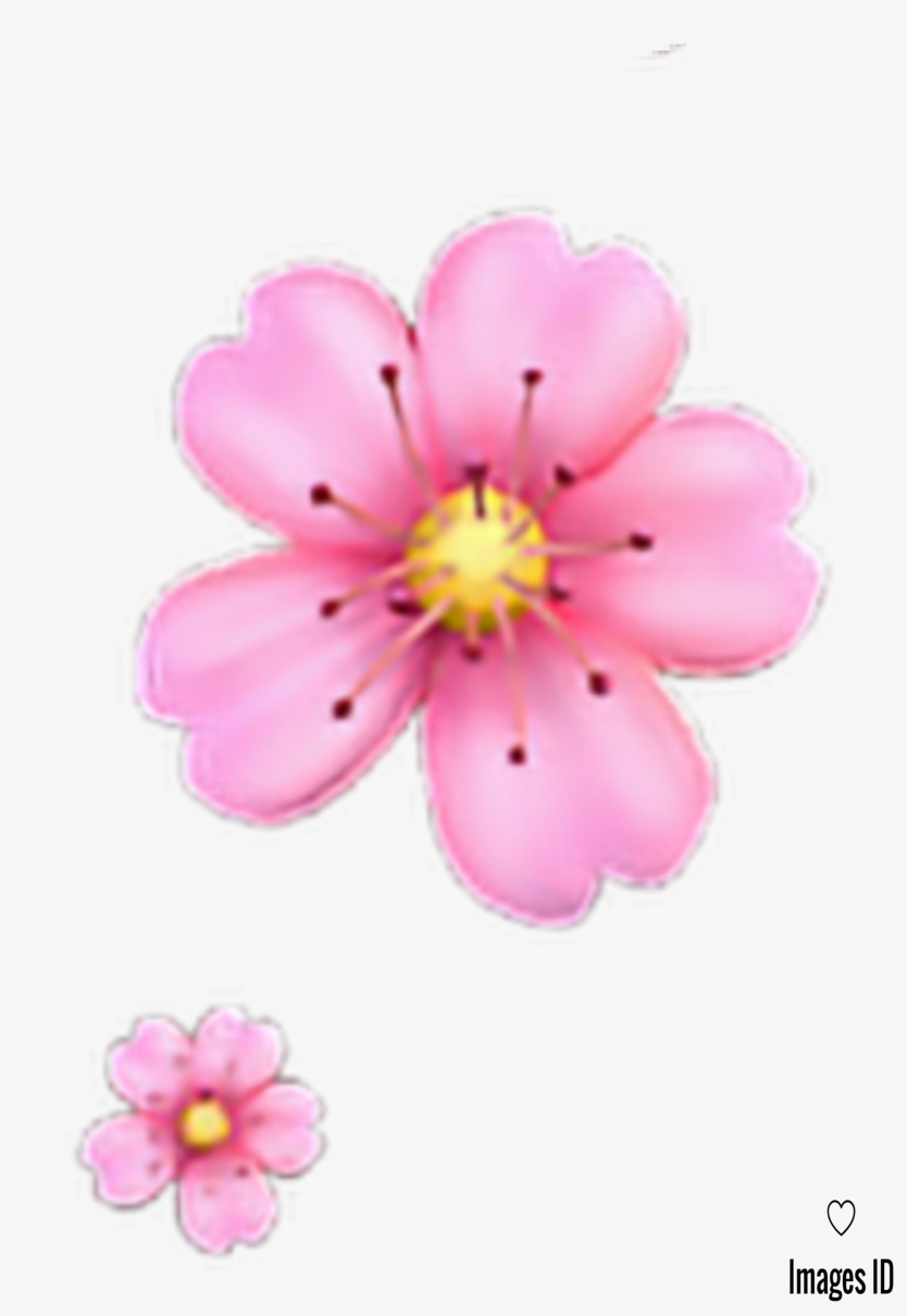 8 Moments That Basically Sum Up Your Flower Emoji Apple Experience Flower Emoji Apple In 2020 Flower Wallpaper Flowers Emoji Flower