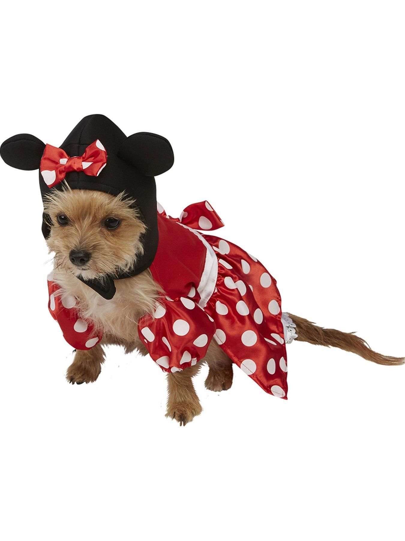 Dog And Rabbit In Mickey Mouse And Minnie Mouse Disney Costumes