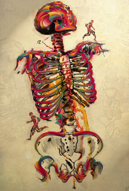 Colorea tu esqueleto~