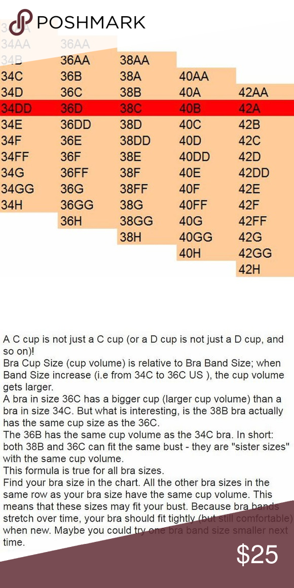 C cup isn't just a C cup, D cup isn't just D Cup! When ... C Cup Breast Vs B Cup