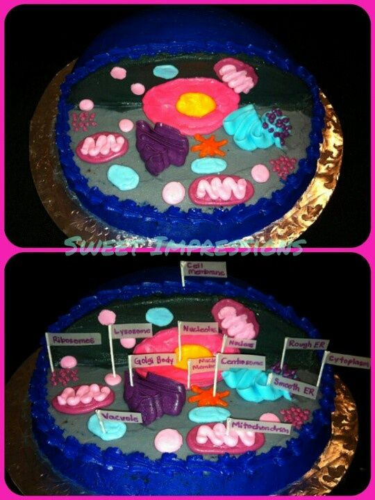 3d cell cake recipe