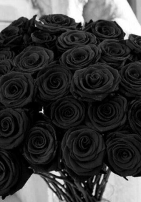fed869e9a4a7a If you ever want to win my heart by me a bouquet of black roses.