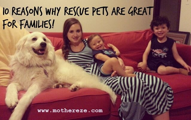 Reasons Rescue pets are great for families!