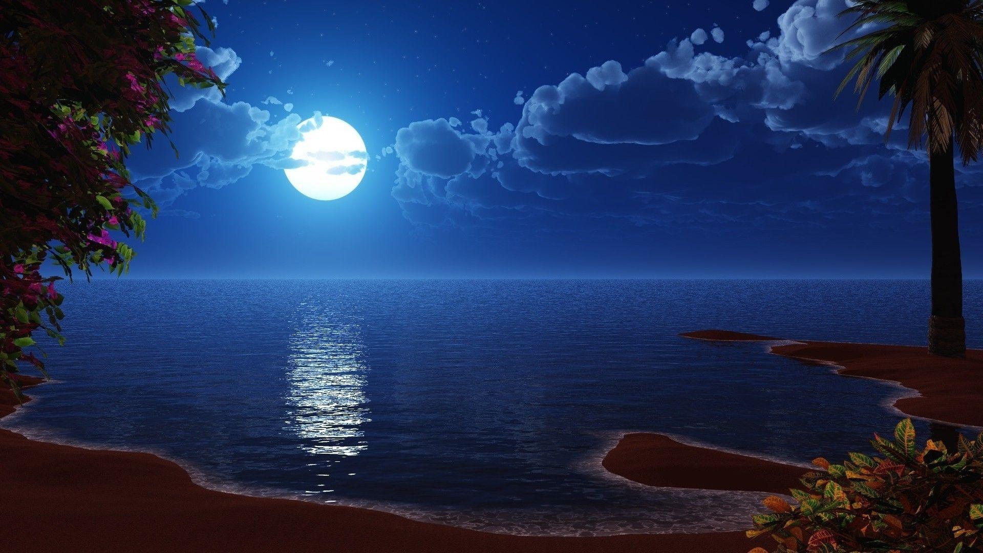 Beach At Night Beautiful Moon