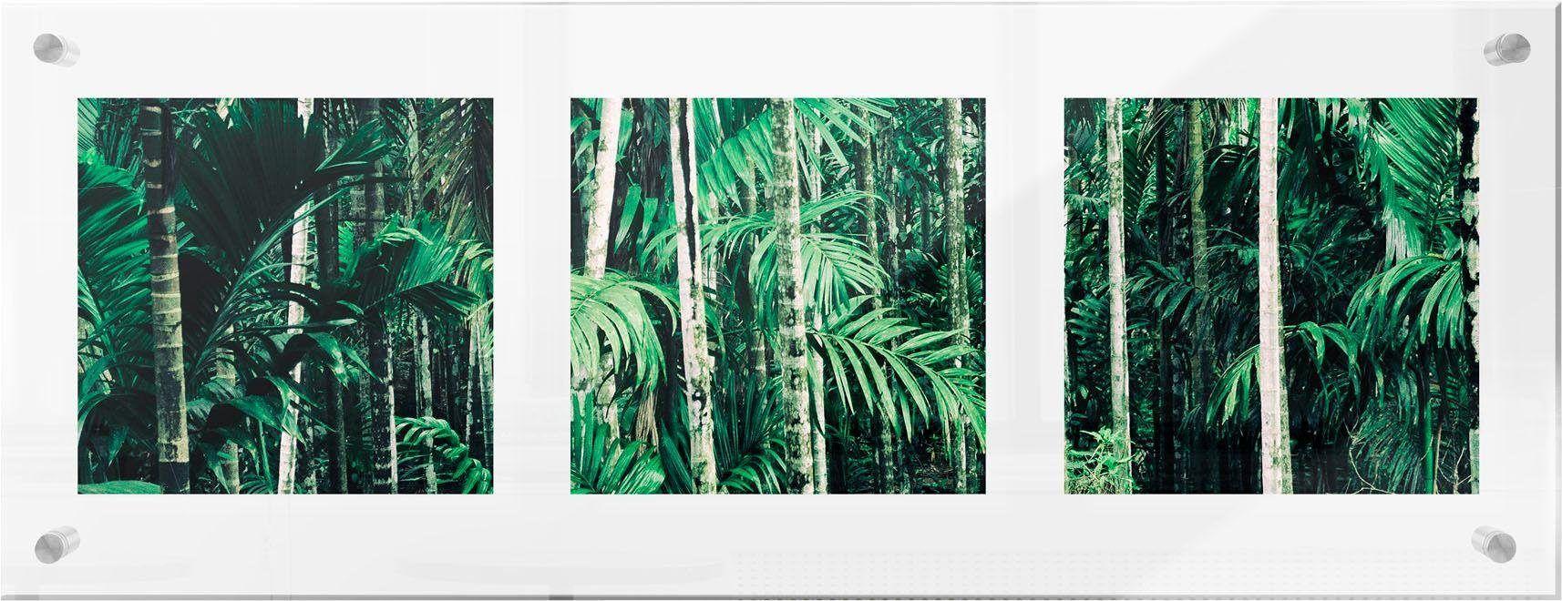 Premium collection by Home affaire Glasbild grün, (B/H): 78/28cm, »Im Dschungel« Jetzt bestellen unter: https://moebel.ladendirekt.de/dekoration/bilder-und-rahmen/bilder/?uid=bda33bbd-655e-5ff6-84cf-efb6d855f676&utm_source=pinterest&utm_medium=pin&utm_campaign=boards #glasbild #bilder #rahmen #dekoration