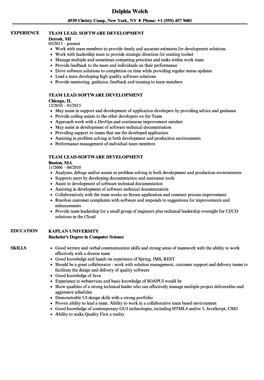 Team Lead Software Development Resume Samples Velvet Jobs