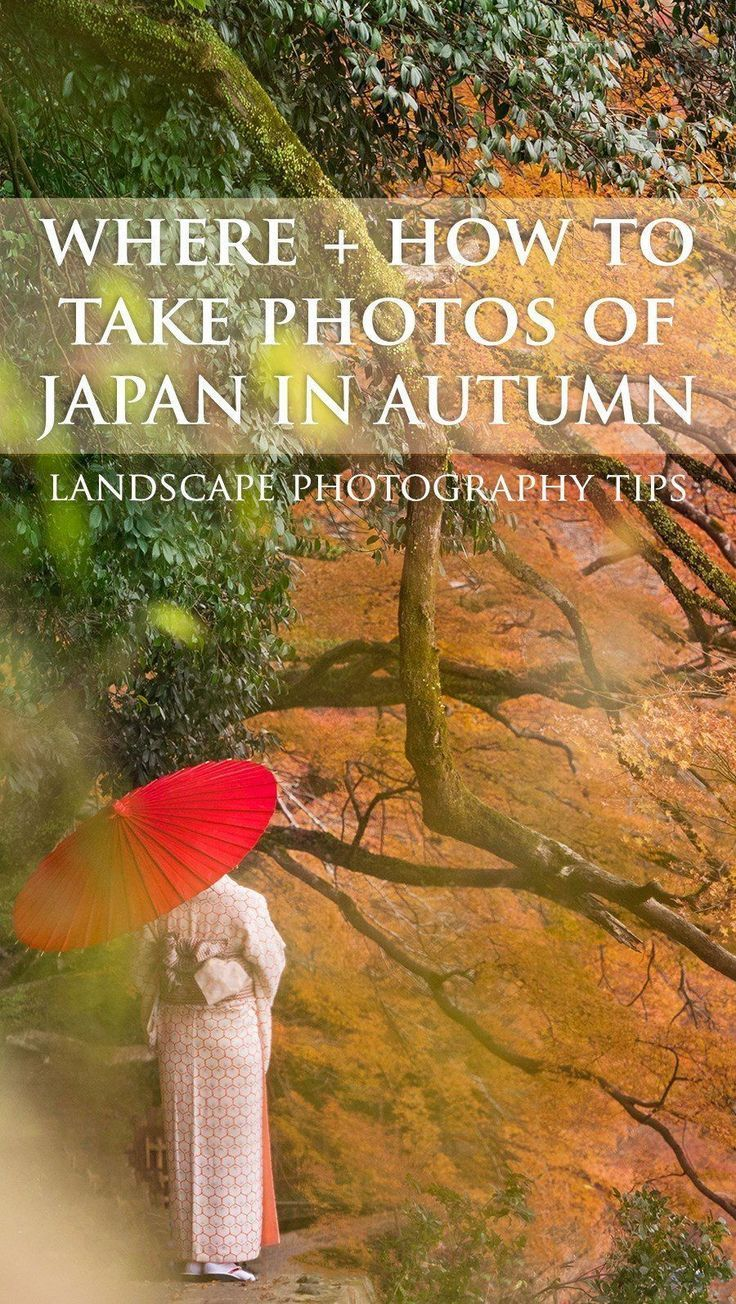 Autumn in Japan - Travel and Photography Tips for Kyoto + Tokyo #autumnfoliage