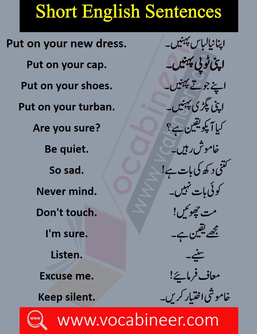 Basic English Sentences With Urdu And Hindi Translation Pdf Vocabineer Basic English Sentences English Phrases Sentences English Vocabulary Words [ 1122 x 864 Pixel ]