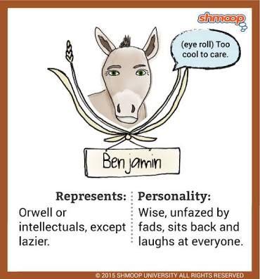 mollie in animal farm google search educate pinterest farm