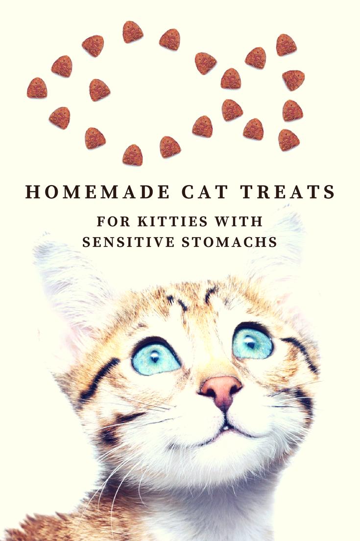 Homemade Cat Treats For Kitties With Sensitive Stomachs Recipe Cats And Meows Diy Cat Treats Cat Treats Homemade Homemade Cat