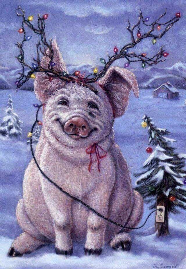 Картинки с свиньями новогодние