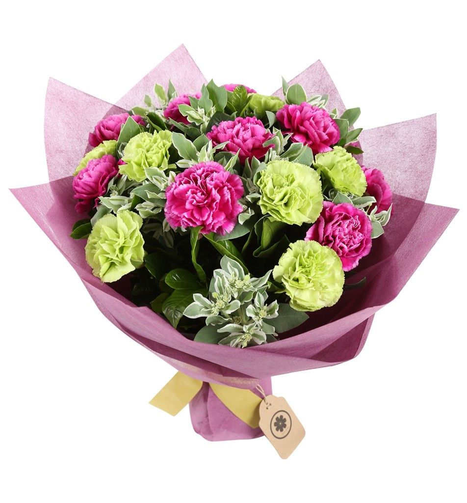 Mixed Color Carnations Bouquet Carnation Bouquet Online Flower Shop Hot Pink Roses