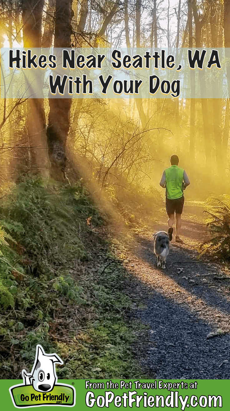 Hike Near Seattle With Your Dog | Go Play! Things to Do On a