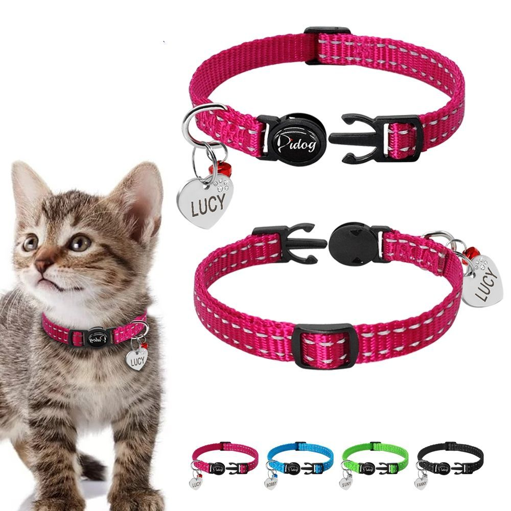 Reflective Kitten Collar With Id Tag Wide Brisk 30 Off With Free Delivery All Over The World Visit Our Website Now An In 2020 Kitten Collars Cat Collars Pet Collars
