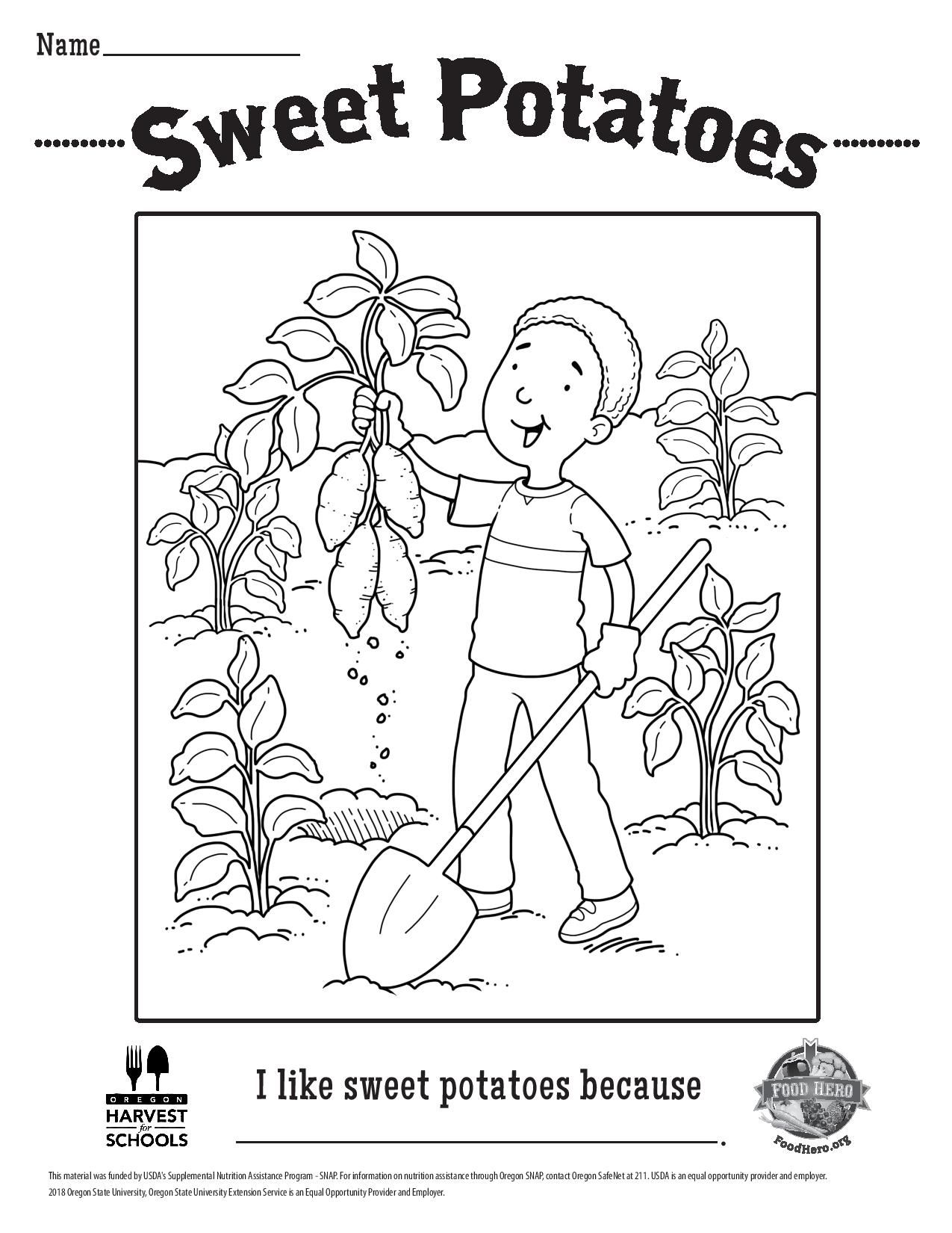 Free Coloring Sheet Sweet Potatoes Sweet Potato Potatoes