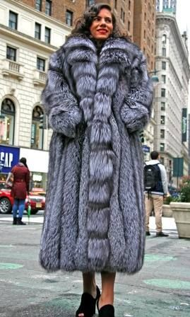 1000  images about Designer fur coats on Pinterest | Silver foxes