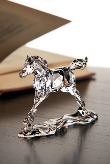 Swarovski SCS Foal 2014