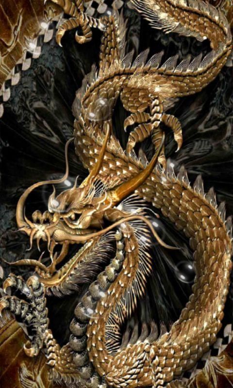 Golden Dragon Wallpaper Hd Android Kadadaorg