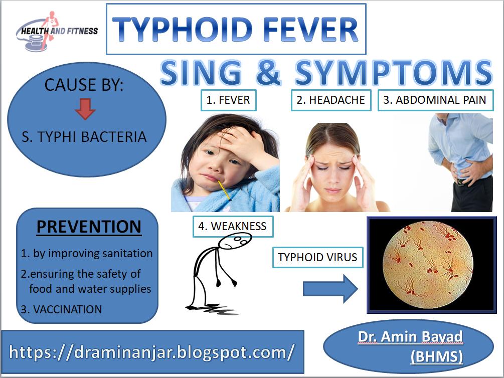 Typhoid Fever Typhoid Fever Fever Symptoms Prevention
