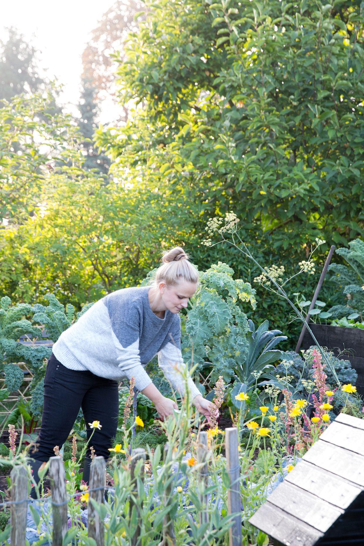 Theresas Kuche Theresa Trifft Marie Himmel Haus Und Garten Schrebergarten Garten