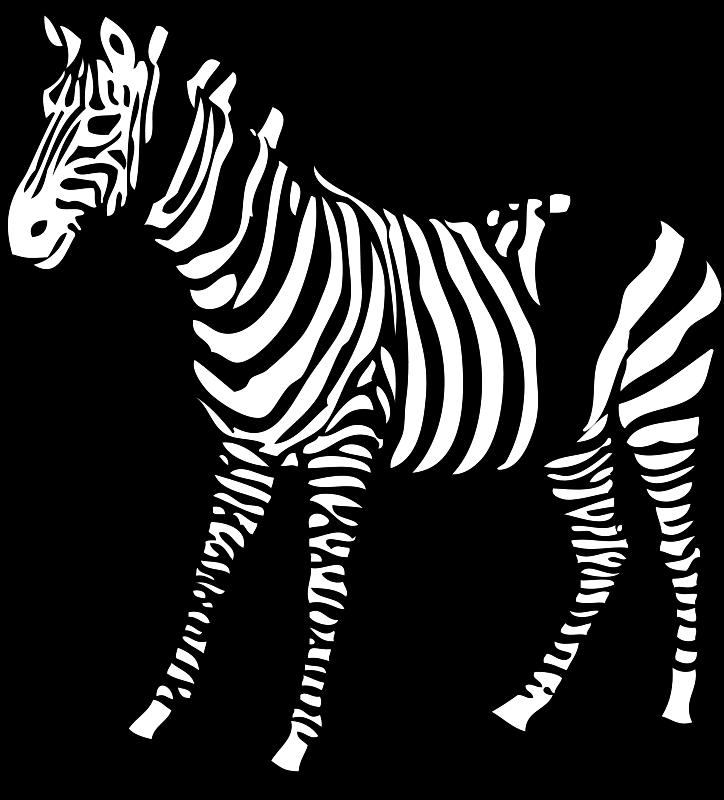 Animal Clip Art Clip Art Middot Bear Black White Line Teddy Bear 2 Clip Art Free Clip Art Zebra