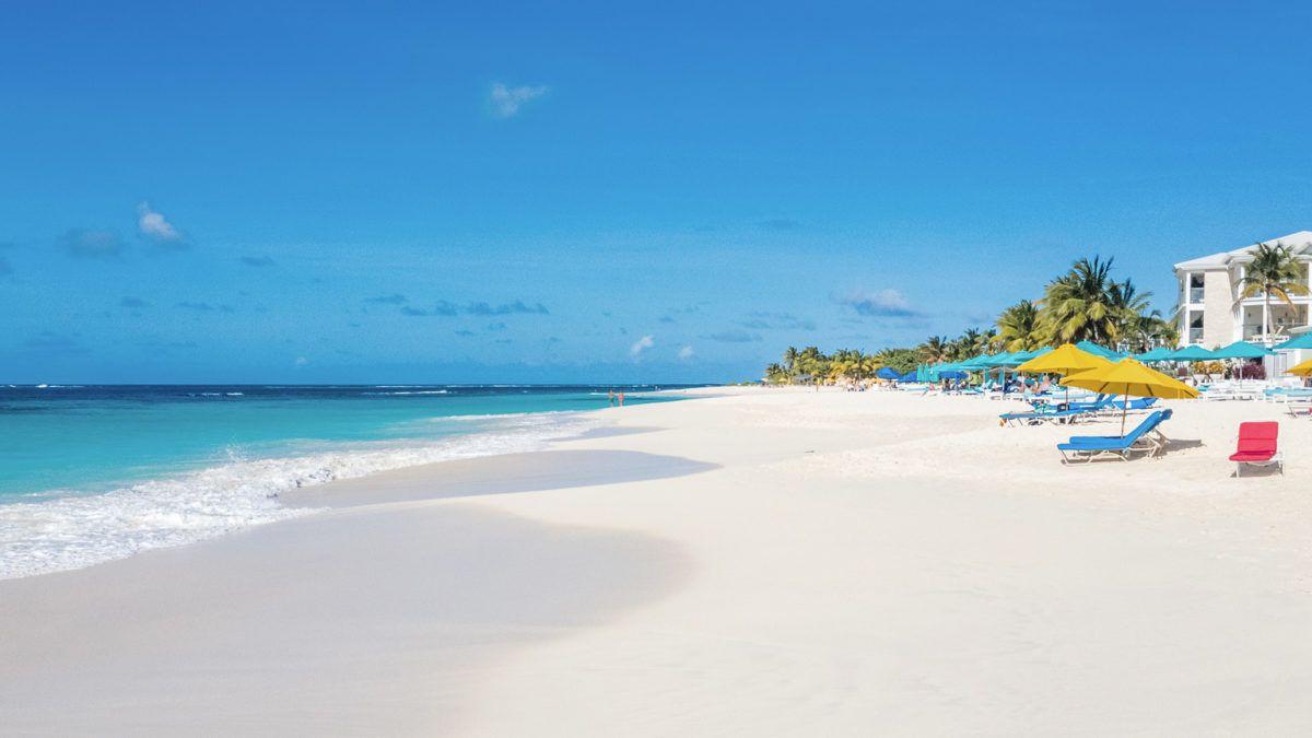 Caribbean Zoom Virtual Backgrounds Make Boring Meetings Better Beach Background Background Beach