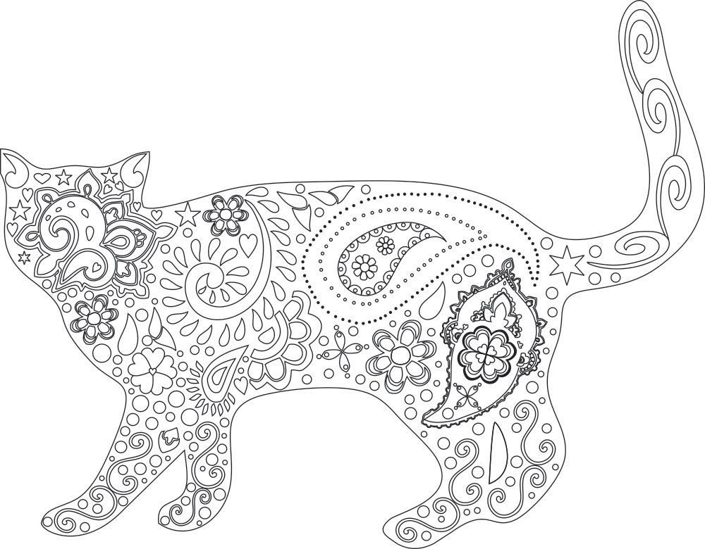new cat kitten adult coloring page instant pdf digital download print