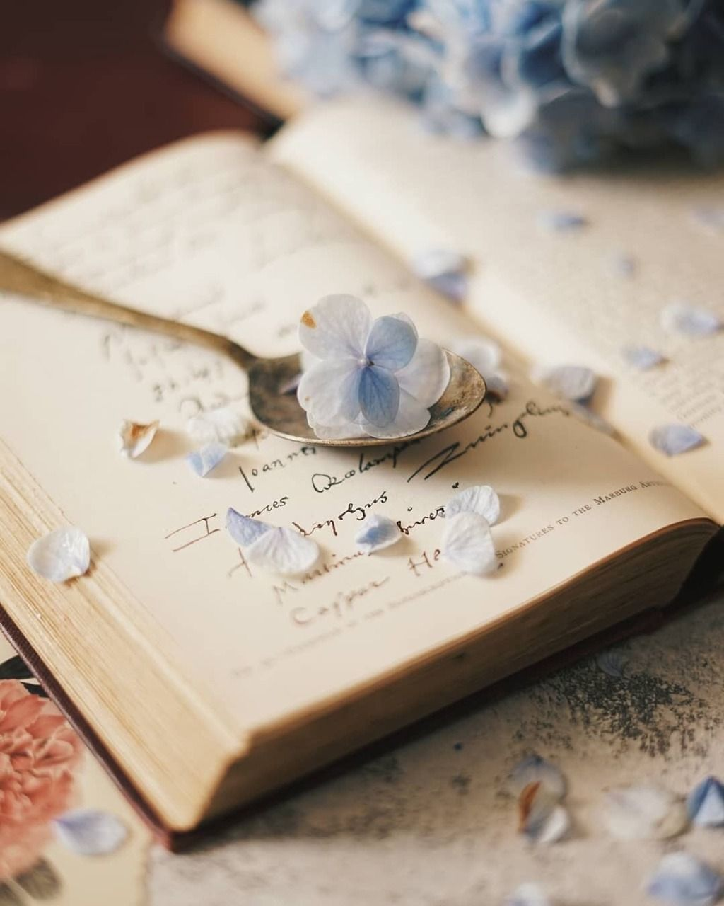 Vintage Book And Flowers Book Flowers Book Aesthetic Book Photography