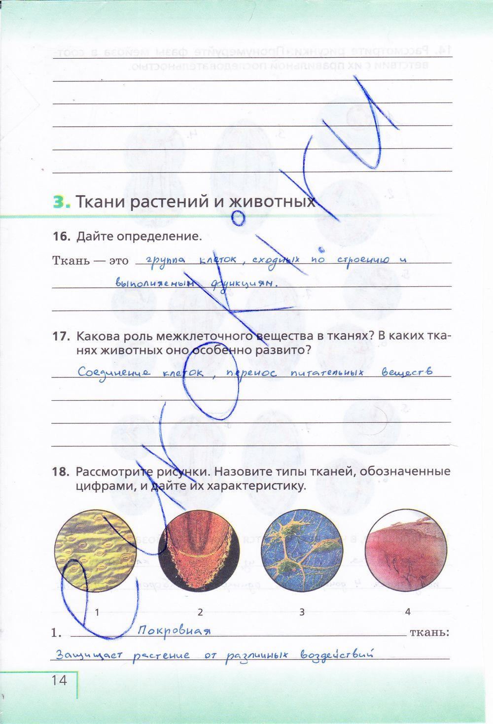 Гдз по биологии 9 класс тетради сосновская